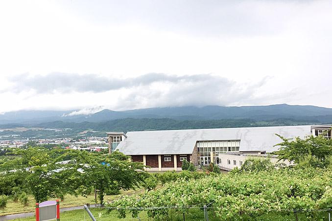 f:id:yuki53:20170702154401j:plain