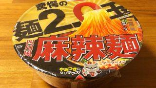 驚愕の麺2.0玉 四川風麻辣麺