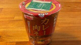 THE和 山椒香るカレー肉そば
